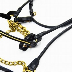 BRIDLE ARAB SHOW BLACK WITH BRASS CHAIN AND LEAD