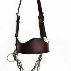 HALTER CATTLE SHOW LEATHER WITH D RING AND FELT