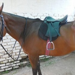 SADDLE SOLO STARTER WITH STIRRUPS AND IRONS