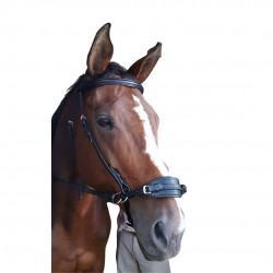 BRIDLE BEADED BB WEB REIN