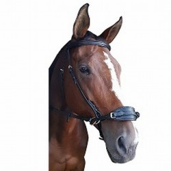 BRIDLE BITLESS CRANK NOSE LEATHER
