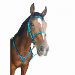 ENDURANCE BRIDLE AND BREAST PLATE SET SOLO AMERICAN BIOTHANE