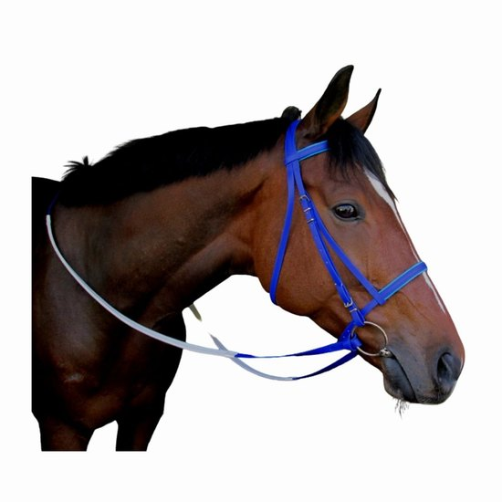BRIDLE RACE PVC AND REINS