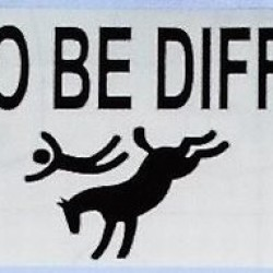 BUMPER STICKERS DARE TO BE DIFFERENT