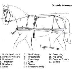 REINS HARNESS DOUBLE LEATHER